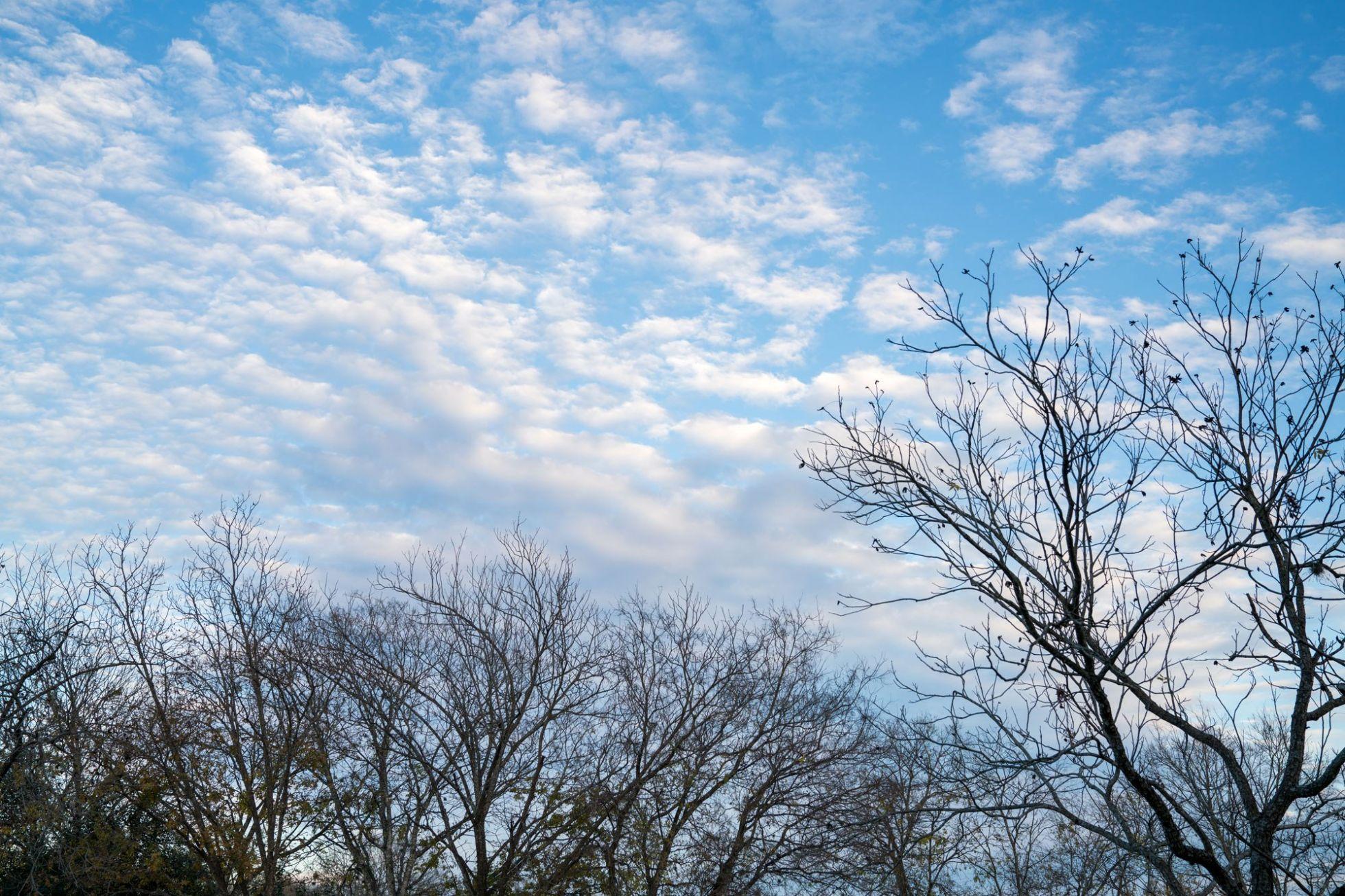 Autumn Cloudy Blue Sky